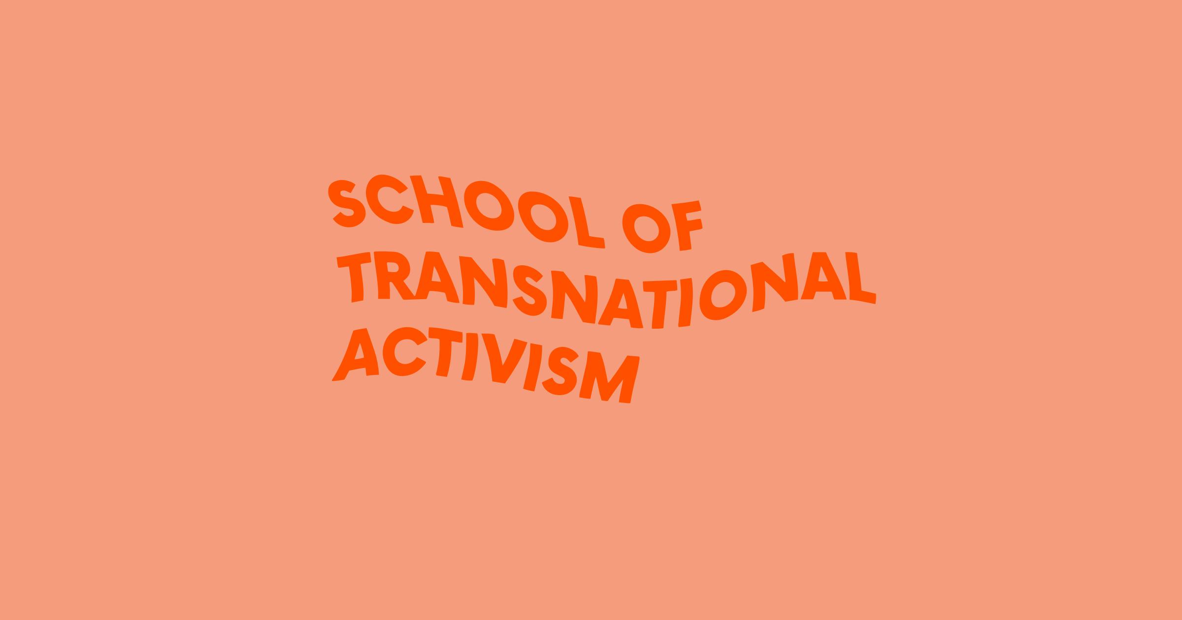 School of Transnational Activism